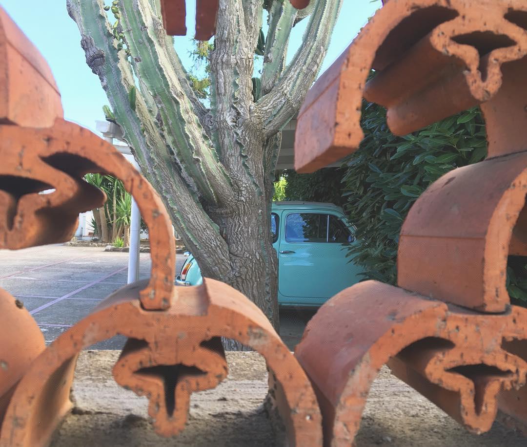 #curves #fiat500 #verdeacqua #anacapri #italy