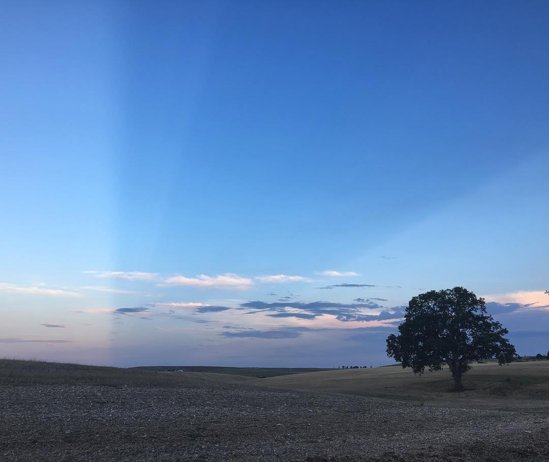 #sky #divided #crepuscularrays #sunset #altamura